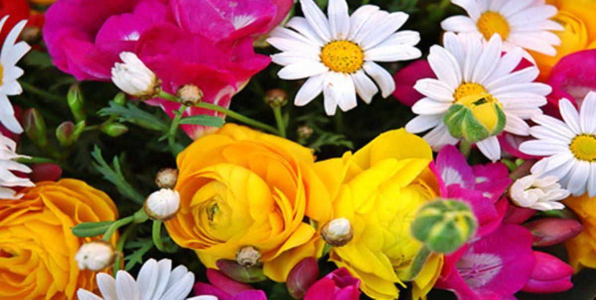 Rüyada çiçek Görmek Rüyada Görmek